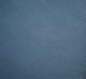 Sargasso leather texture for background Royalty Free Stock Photography