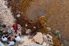 Sargassum algae and trash with local taxi drivers during their afternoon siesta on the popular vacation beach of Playa Del C stock photo