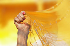 Sari Royalty Free Stock Photography