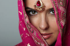 Sari στοκ εικόνες