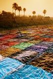 Sari de secagem, India Fotografia de Stock Royalty Free
