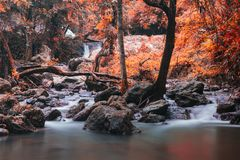 Sarika waterfall with autumn foliage colors. Cascade motion waterfall of Sarika National Park, Nakhon Nayok, Thailand. Autumn red foliage leaf by color process Stock Images