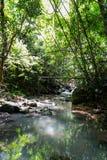 Sarika Waterfall Stock Photography