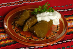 Sarma Royalty Free Stock Images