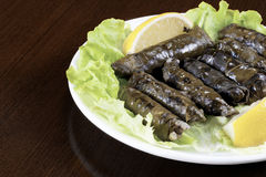 Sarma Royalty Free Stock Image