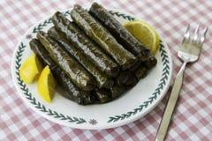 Sarma, foglie di uva farcita in un piatto Immagine Stock
