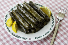 Sarma, stuffed grape leaves in a plate Stock Image