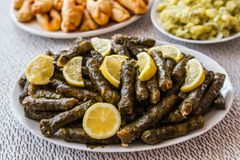 Sarma, Stuffed Grape Leaves Stock Photography