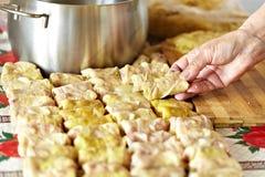 传统盘罗马尼亚的sarmale 免版税库存图片