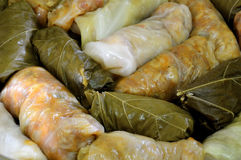 Sarmale, stuffed cabbage, Romanian cuisine Royalty Free Stock Photos