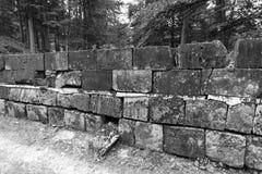 Sarmisegetusa regia,老废墟在Transilvania, Orastie山,罗马尼亚 免版税库存照片