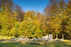 Sarmizegetusa Regia - ancient rock and wood sanctuary Royalty Free Stock Photo