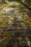 Sarmizegetusa Regia - strada antica della roccia Fotografia Stock Libera da Diritti