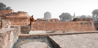 Sarnath Royalty Free Stock Photo