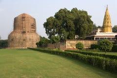 Sarnath - Stupa buddista - India Fotografie Stock Libere da Diritti