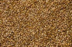 Sarrasin brun échaudé, fond photos libres de droits