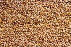 sarrasin sarrasin frais Fond sec de sarrasin Texture de sarrasin photo stock