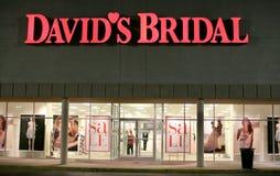 Sarto da donna nuziale del ` s di David Fotografia Stock Libera da Diritti