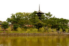 Sarusawa-ike Pond. In Nara, with the Five-Story Pagoda of Kokufuji Temple in the background Stock Photography