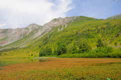Sary-Chelek Lake in Kyrgyz mountains Royalty Free Stock Photo