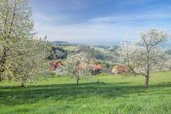 Sasbachwalden,Black Forest,Germany Stock Photography