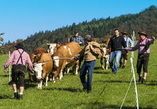 "Sasbachwalden, Zwart Bos, Baden Wuerttemberg, Oct van Duitsland †"" Royalty-vrije Stock Fotografie"