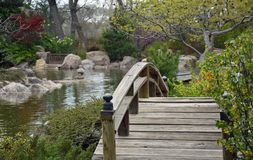 Sasebo japansk trädgård Koi Pond royaltyfri fotografi