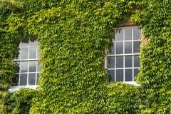 Sash Windows Photo stock