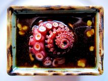 sashimi χταποδιών Στοκ φωτογραφία με δικαίωμα ελεύθερης χρήσης