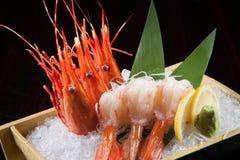 Sashimi del gamberetto sul ghiaccio Immagine Stock