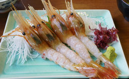 Sashimi fresco dei gamberetti Fotografie Stock