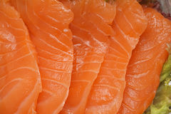 Sashimi salmon Royalty Free Stock Image