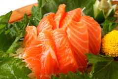 Sashimi of the salmon Royalty Free Stock Photography