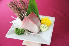 Salmon sashimi set on a plate. In close up royalty free stock photography