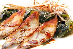 Sashimi unagi close up Stock Photography