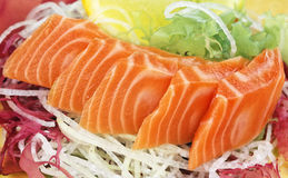 Sasimi with vegetables. Fresh salmon sasimi on vegetables background Stock Images