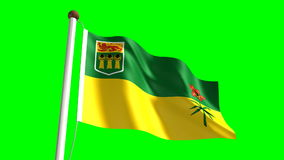 Saskatchewan flag stock footage