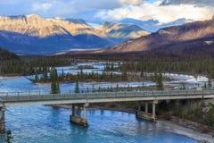 Saskatchewan flod Royaltyfri Bild