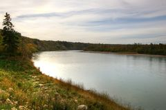 Saskatchewan flod royaltyfri foto