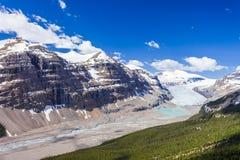 Saskatchewan glaciärdal, Jasper National Park, kanadensiska steniga berg royaltyfri foto