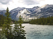 Saskatchewan River banff national park canada Stock Image