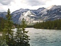 Saskatchewan River banff national park canada. Mountain and snow Stock Image
