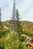 Saskatchewan rzeki dolina fotografia royalty free