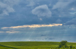 Saskatchewan-Sommer-Feld stockfotos