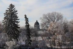 Saskatchewan władza ustawodawcza przez mroźnych drzew obraz royalty free