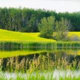 Sasklandschap Stock Foto's