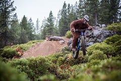 Sasquatch (abominável homem das neves) salta uma bicicleta no ar Foto de Stock Royalty Free