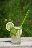 Sassi vatten i en glass citron Arkivfoto