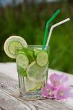 sassi Wasser Lizenzfreies Stockfoto