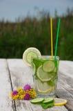 Sassi-Wasser in einem Glas Stockfotos